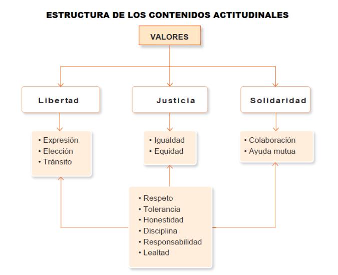 Contenidos actitudinales_Estructura